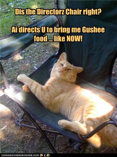 Dis the Directorz Chair right?  Ai directs U to bring me Gushee food ... like NOW!