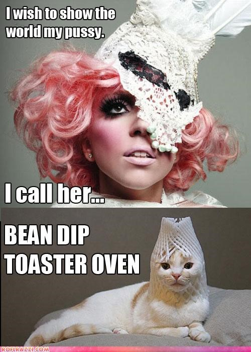 Gaga's Kitty: Let Me Show U It...
