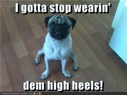 bad,do not want,health,high heels,injury,leg,pain,pug,regret,shoes