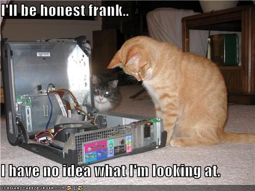 I'll be honest frank..  I have no idea what I'm looking at.