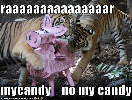 raaaaaaaaaaaaaaar  mycandy    no my candy