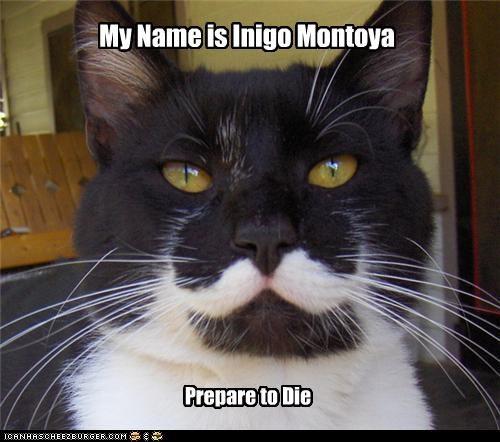 caption,captioned,cat,die,Hall of Fame,inigo montoya,name,prepare,quote,the princess bride