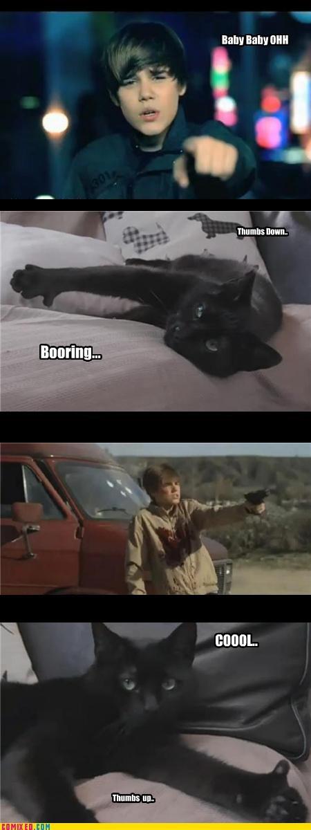 Cats,Caturday,csi,guns,justin bieber
