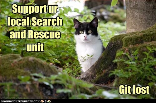 advice,caption,cat,get,get lost,instructions,local,lost,rescue,search,support,unit,wisdom