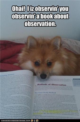 Ohai!  I iz observin' you observin' a book about observation.