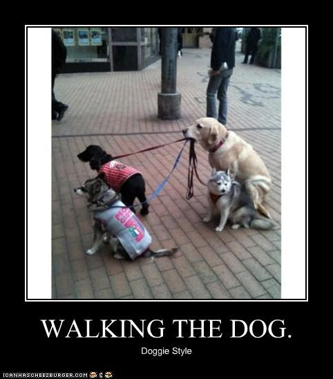 WALKING THE DOG.