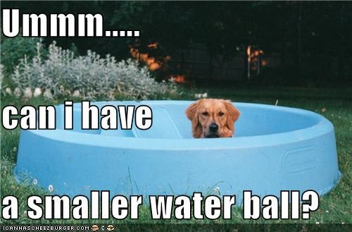 Ummm..... can i have a smaller water ball?