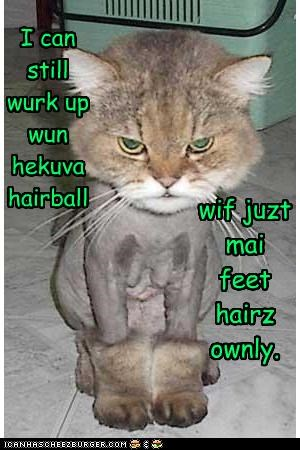 I can still wurk up wun hekuva hairball