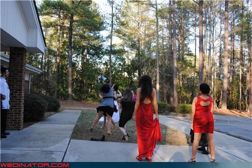 bouquet fight,bouquet toss,family,funny wedding photos,wedding fight