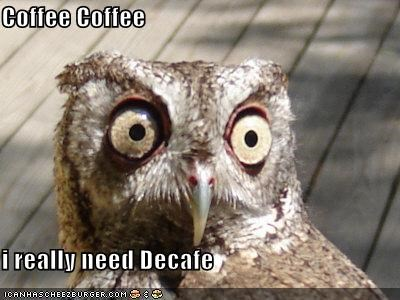Coffee Coffee  i really need Decafe