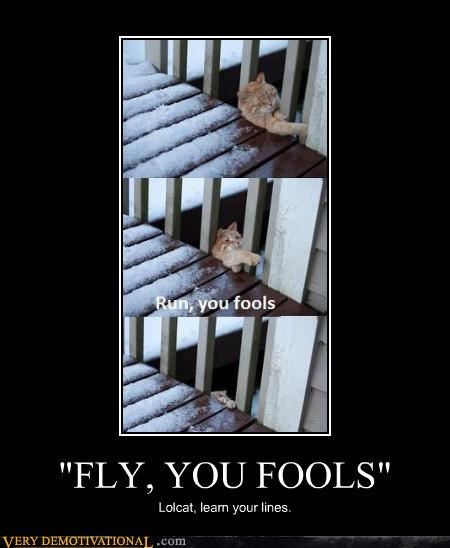 """""""FLY, YOU FOOLS"""""""