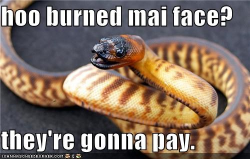 hoo burned mai face?  they're gonna pay.