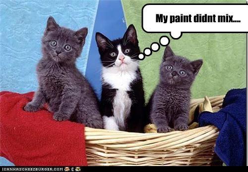 caption,captioned,cat,Cats,color,colors,did not,kitten,mix,paint