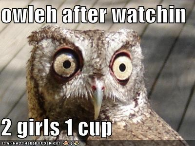 owleh after watchin  2 girls 1 cup