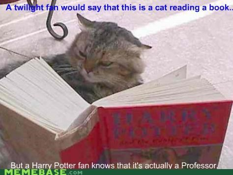 animemes,cat,Harry Potter,professor mcgonagall,reading,twilight