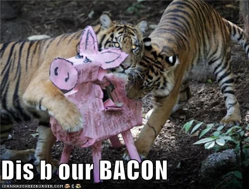 Dis b our BACON