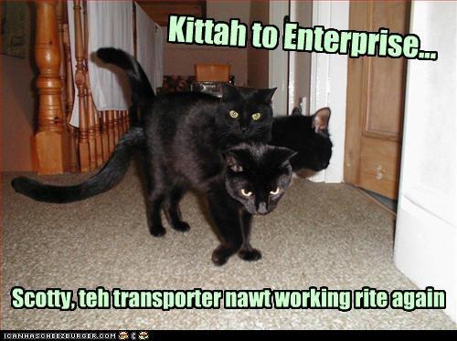 Kittah to Enterprise. Scotty, teh transporter nawt working rite again.