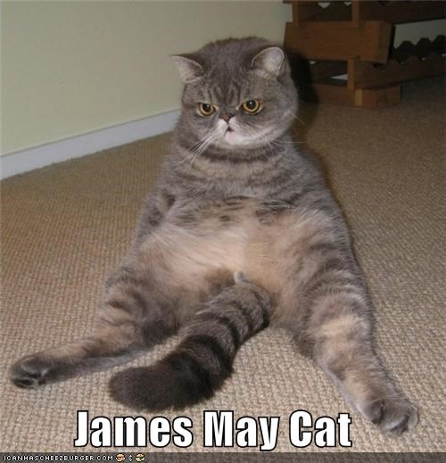 James May Cat