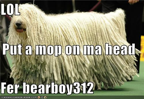 LOL Put a mop on ma head Fer bearboy312