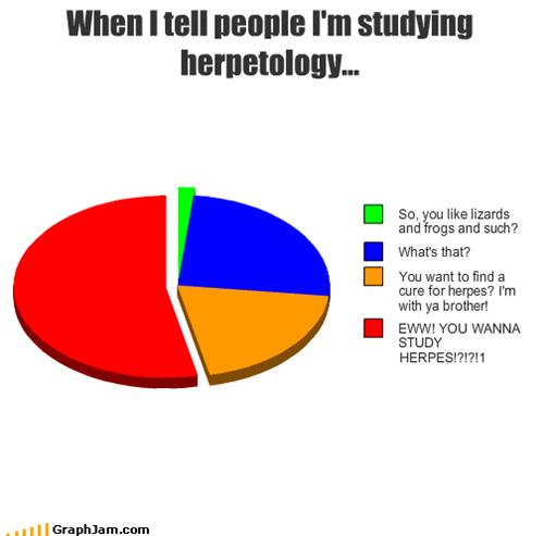 derp,herp,herpes,lizards,Pie Chart,school,studying