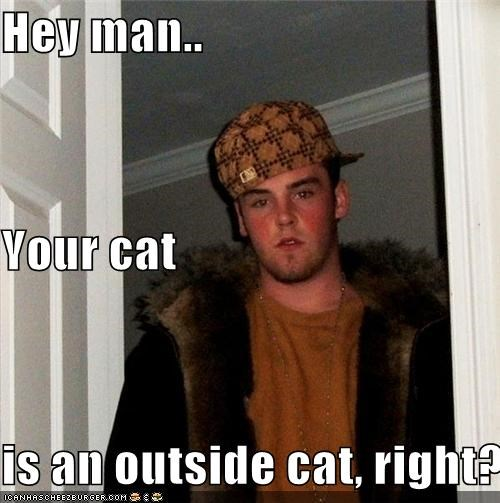 Hey man.. Your cat is an outside cat, right?