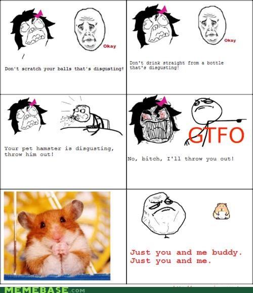 hamster,little buddy,mean girlfriend