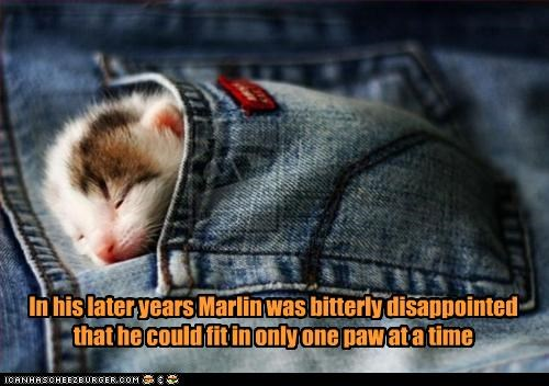 In his later years Marlin was bitterly disappointed that he could fit in only one paw at a time