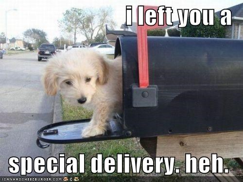 i left you a   special delivery. heh.
