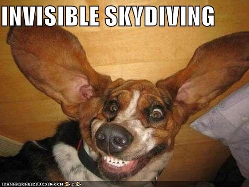 INVISIBLE SKYDIVING