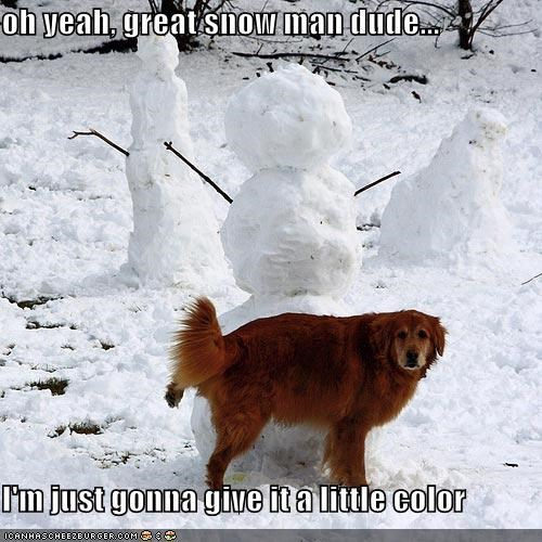 oh yeah, great snow man dude...  I'm just gonna give it a little color