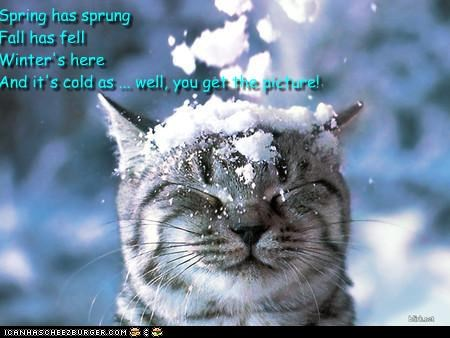 Spring has sprung, Fall has fell, Winter's here and it's cold as ... well, you get the picture!