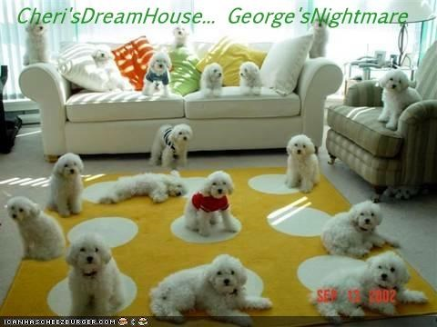 Cheri'sDreamHouse... George'sNightmare
