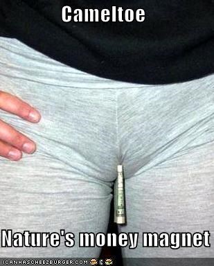 Cameltoe    Nature's money magnet