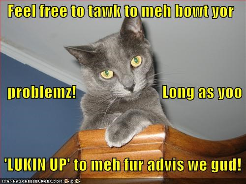 Feel free to tawk to meh bowt yor    problemz!                           Long as yoo   'LUKIN UP' to meh fur advis we gud!