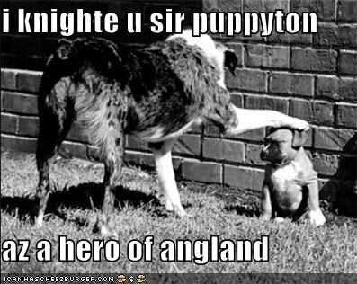 i knighte u sir puppyton  az a hero of angland