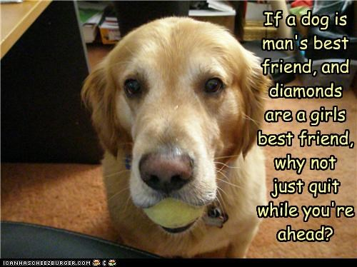 If a dog is man's best friend, and diamonds are a girls best friend, why not  just quit while you're ahead?