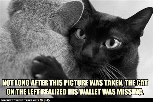 NOT LONG AFTER THIS PICTURE WAS TAKEN, THE CAT ON THE LEFT REALIZED HIS WALLET WAS MISSING.