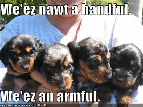 We'ez nawt a handful.  We'ez an armful.