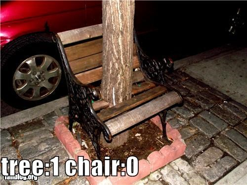 tree:1 chair:0