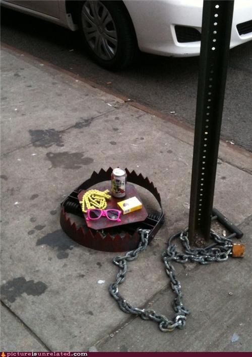 american spirits,art,bear trap,beer,hipsters,pbr,wtf