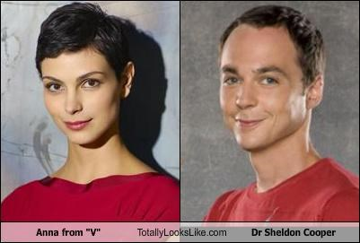 "Anna from ""V"" Totally Looks Like Dr. Sheldon Cooper"