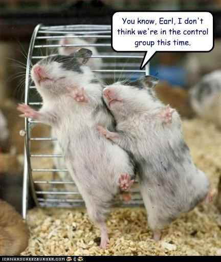 caption,captioned,change,control,difference,drugged,group,not,rat,rats,testing,you know