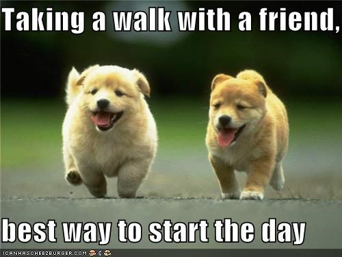 Taking a walk with a friend,  best way to start the day