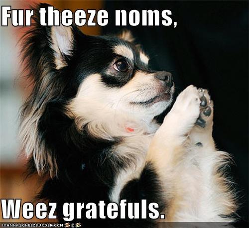 Fur theeze noms,  Weez gratefuls.