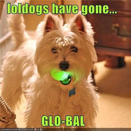 loldogs have gone...  GLO-BAL