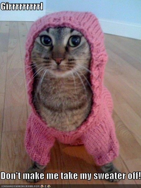 Girrrrrrrrrl  Don't make me take my sweater off!!