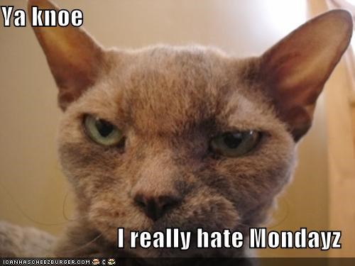 Ya knoe  I really hate Mondayz