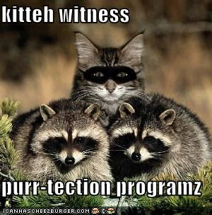 kitteh witness  purr-tection programz