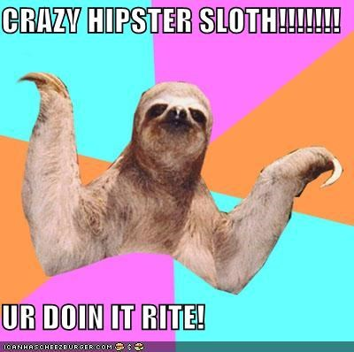 CRAZY HIPSTER SLOTH!!!!!!!  UR DOIN IT RITE!