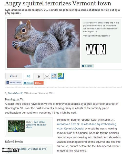 Completely Relevant News: Squirrel WIN